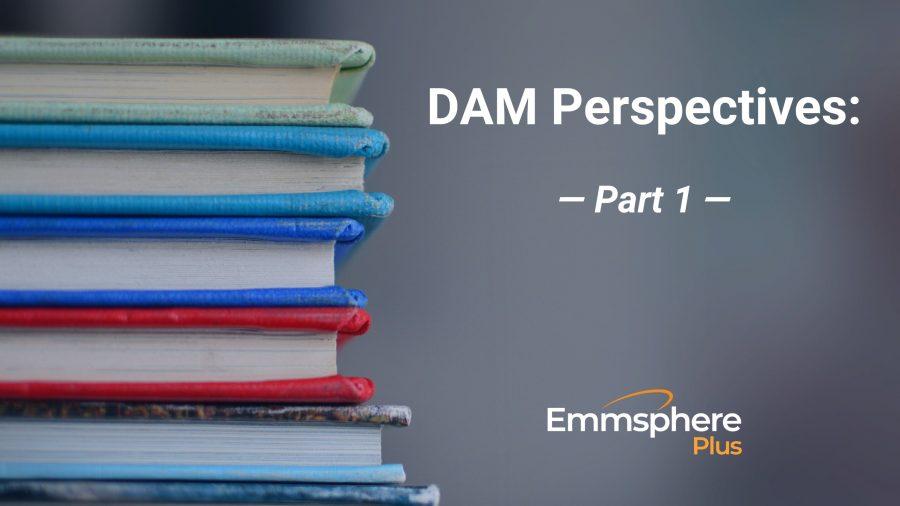 DAM Perspectives – Part 1