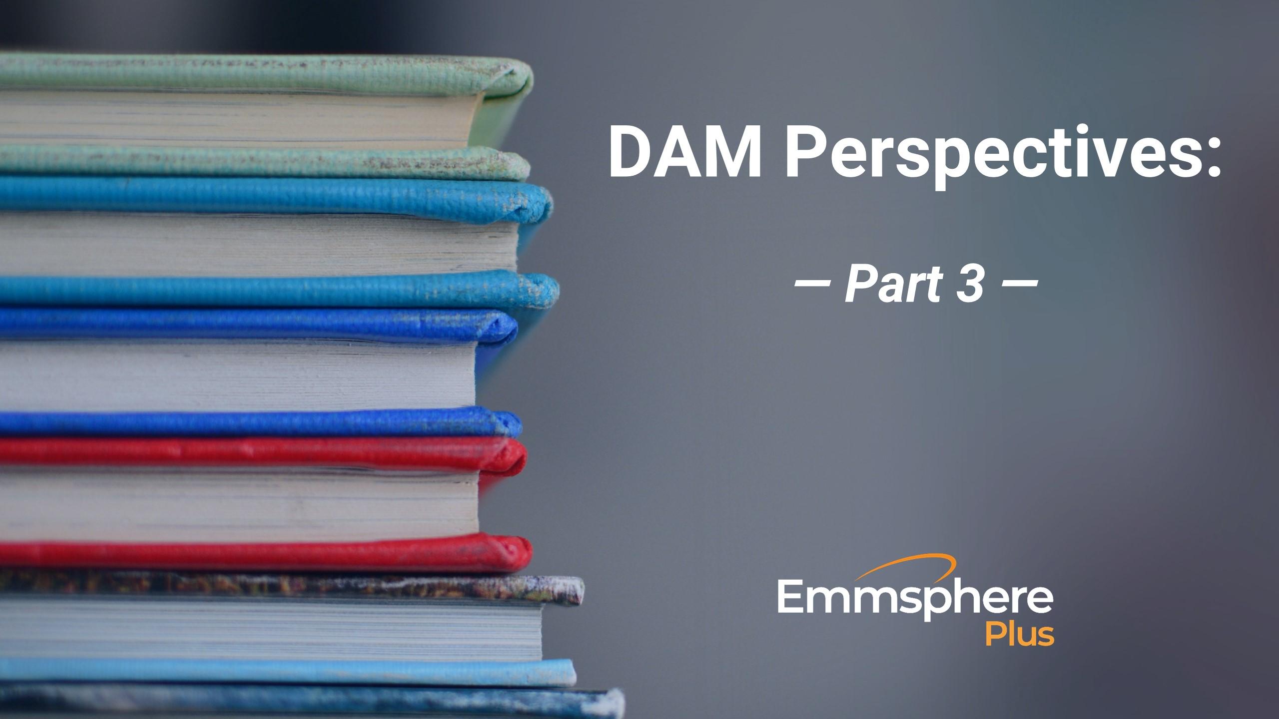 DAM Perspectives – Part 3